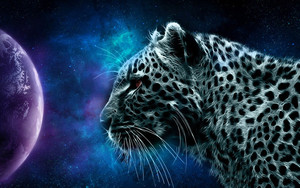 Смотреть обои Animal, Leopard, Space, Planet