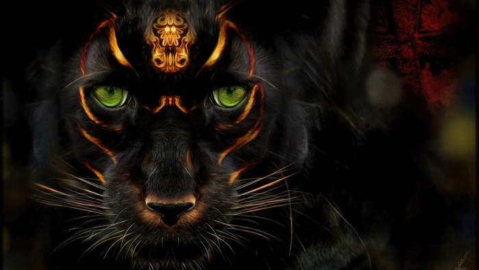 HD Wallpaper of Animal, Green Eyes, Panther, Stare