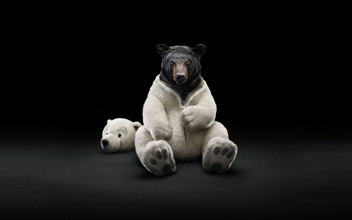 Wallpaper of Bear, Costume, Black, White background & HD image