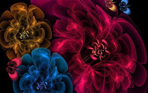 Preview wallpaper flowers, veil, dark, abstract