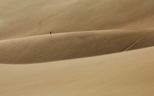 Preview wallpaper of sand dunes, traveller