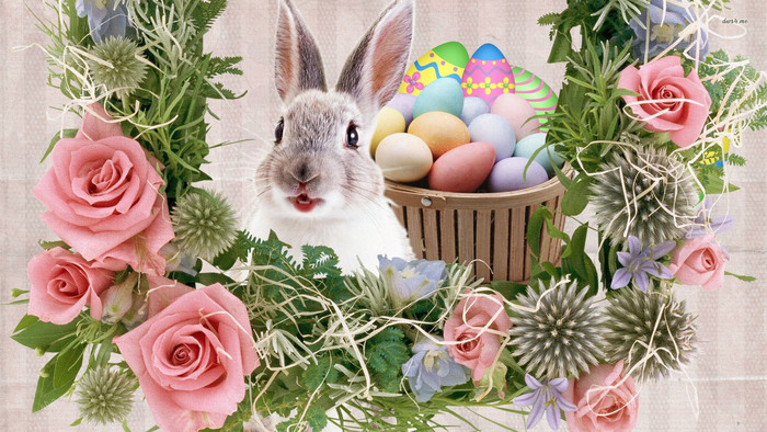 Wallpaper of Holiday, Easter, Rabbit, Flowers, Egg background & HD image