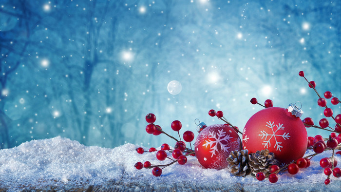 Wallpaper of Berry, Christmas Ornaments, Pine Cone, Snow background & HD image