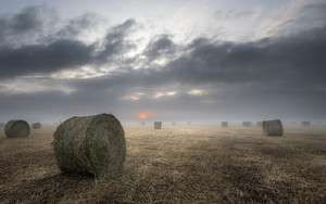 Preview wallpaper Earth, Fog, Straw, Field