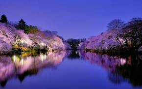 Preview wallpaper  <b>Night</b>, Park, Osaka, Japan