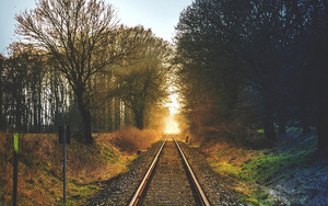 Смотреть обои Trees, Railway, Greenery, Sunset