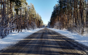Preview wallpaper Forest, Nature, Road, Winter