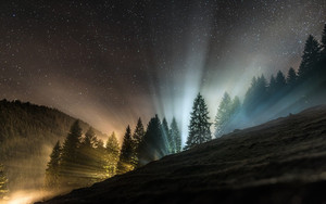 Смотреть обои Alps, Forest, Sky, Stars, Switzerland