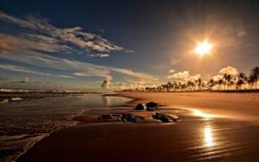 Preview wallpaper  <b>Sunset</b> on Costa do Sauipe beach, Bahia, Brazil