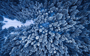 Preview wallpaper  Aerial, Forest, <b>Winter</b>, Snow