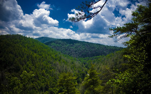 Смотреть обои Mountains, Trees, Top View, Sky, Linville Falls