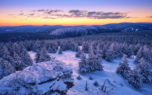 Preview wallpaper Czech Republic, Forest, Landscape, Mountain, Snow,