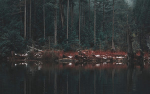 Preview wallpaper  <b>Lake</b>, Shore, Trees, Reflection