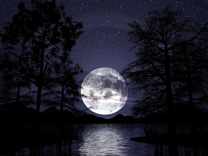 HD Wallpaper Artistic, Lake, Moon, Night, Silhouette, Sky, Tree