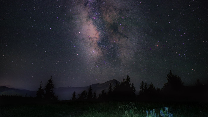 HD Wallpaper Starry sky, Night, Mountains, Grass, Milky Way