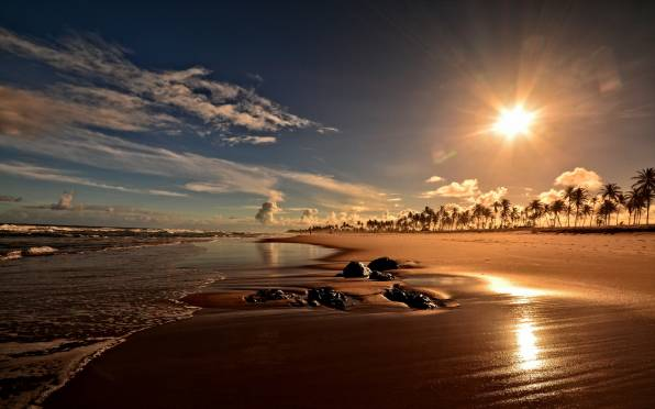 Обои Sunset on Costa do Sauipe beach, Bahia, Brazil