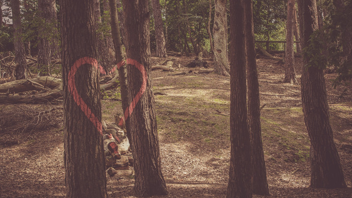 HD Wallpaper Heart, Trees, Paint