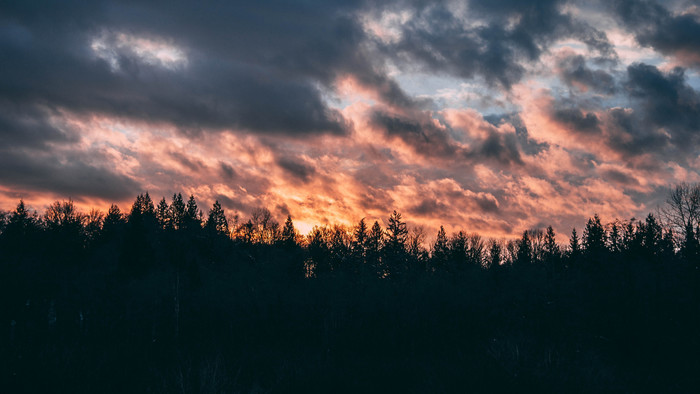 HD Wallpaper Clouds, Trees, Sunset, Sky