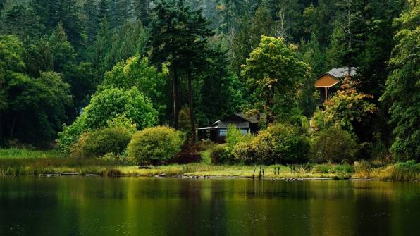 HD Wallpaper Forest, Trees, Lake, House