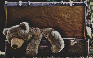 Preview wallpaper of Stuffed Animal,  Suitcase, Teddy Bear