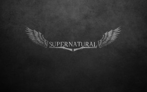 Смотреть обои Supernatural, Winchesters, Wings, Poster