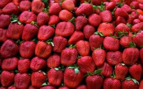 Смотреть обои strawberries, leaves, fruit, red, pattern