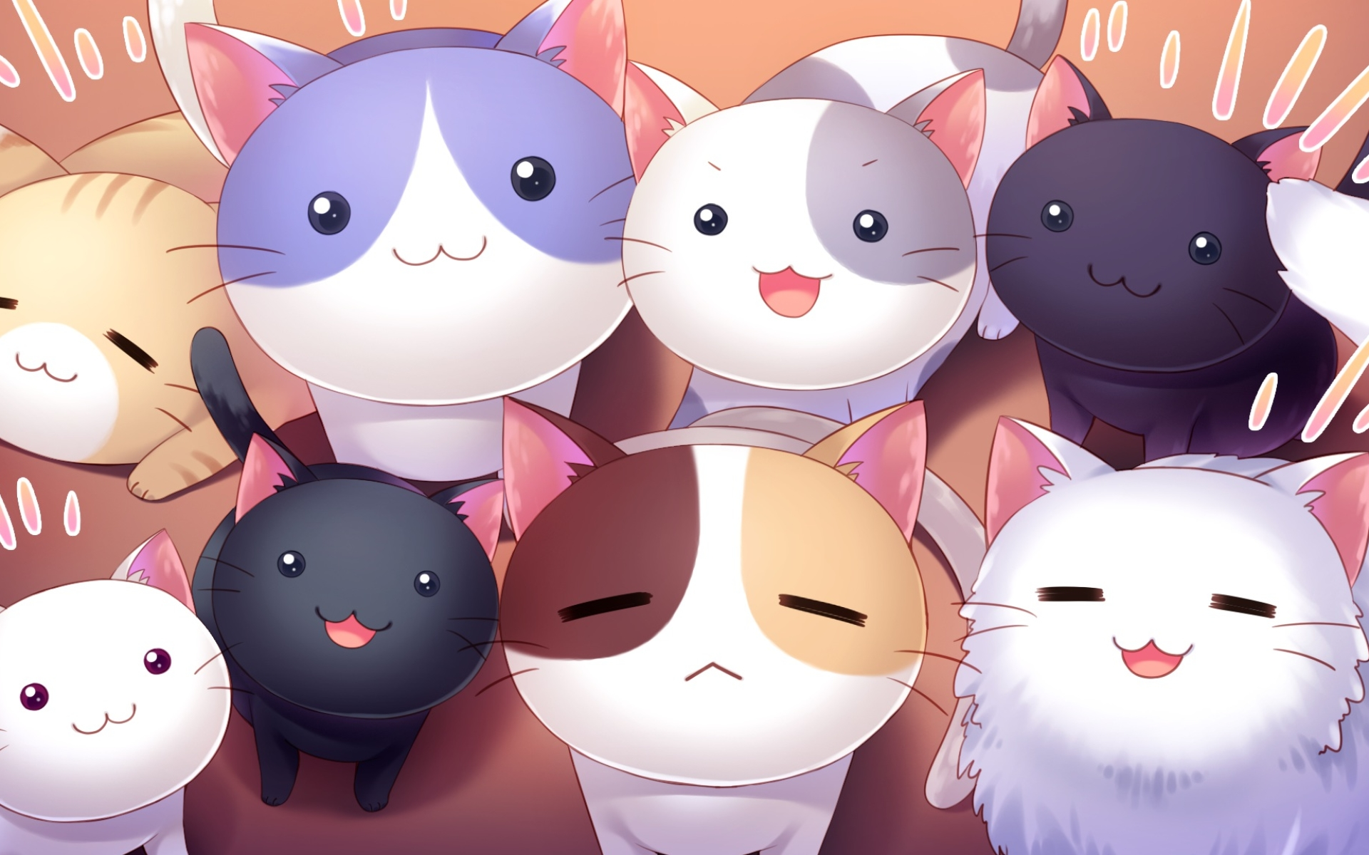 Wallpaper Of Cat Cute Smile Stare Anime Background Hd Image