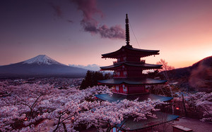 Preview wallpaper of Cherry Blossom, Japan, Spring