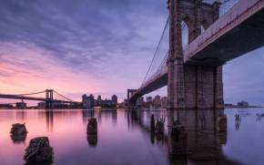 Смотреть обои Brooklyn Bridge, New York, USA in the evening