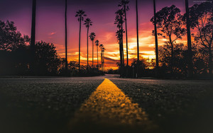 Смотреть обои Los Angeles, California, Road, Palms, Sunset