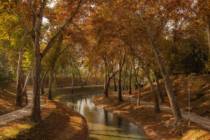 HD Wallpaper Tashkent, Park, Anhor river, Autumn