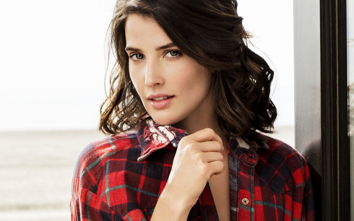 Wallpaper of Actress, Black Hair, Canadian, Cobie Smulders background & HD image