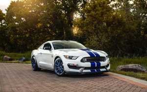 Preview wallpaper of Car, Ford, Muscle Car, Shelby Mustang GT 350