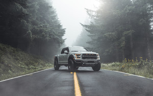 Preview wallpaper Car, Road, Forest, Trees, Silver, Ford Raptor, Fog