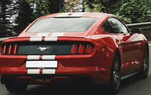 Смотреть обои Auto, Ford Mustang 2017, Motion, Muscle Car