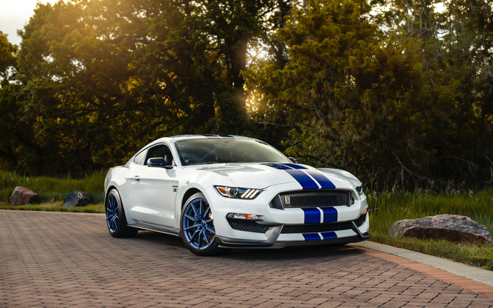 Wallpaper of Car, Ford, Muscle Car, Shelby Mustang GT 350 background & HD image
