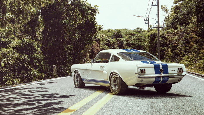 HD Wallpaper of Ford, Shelby, GR350R, Muscle