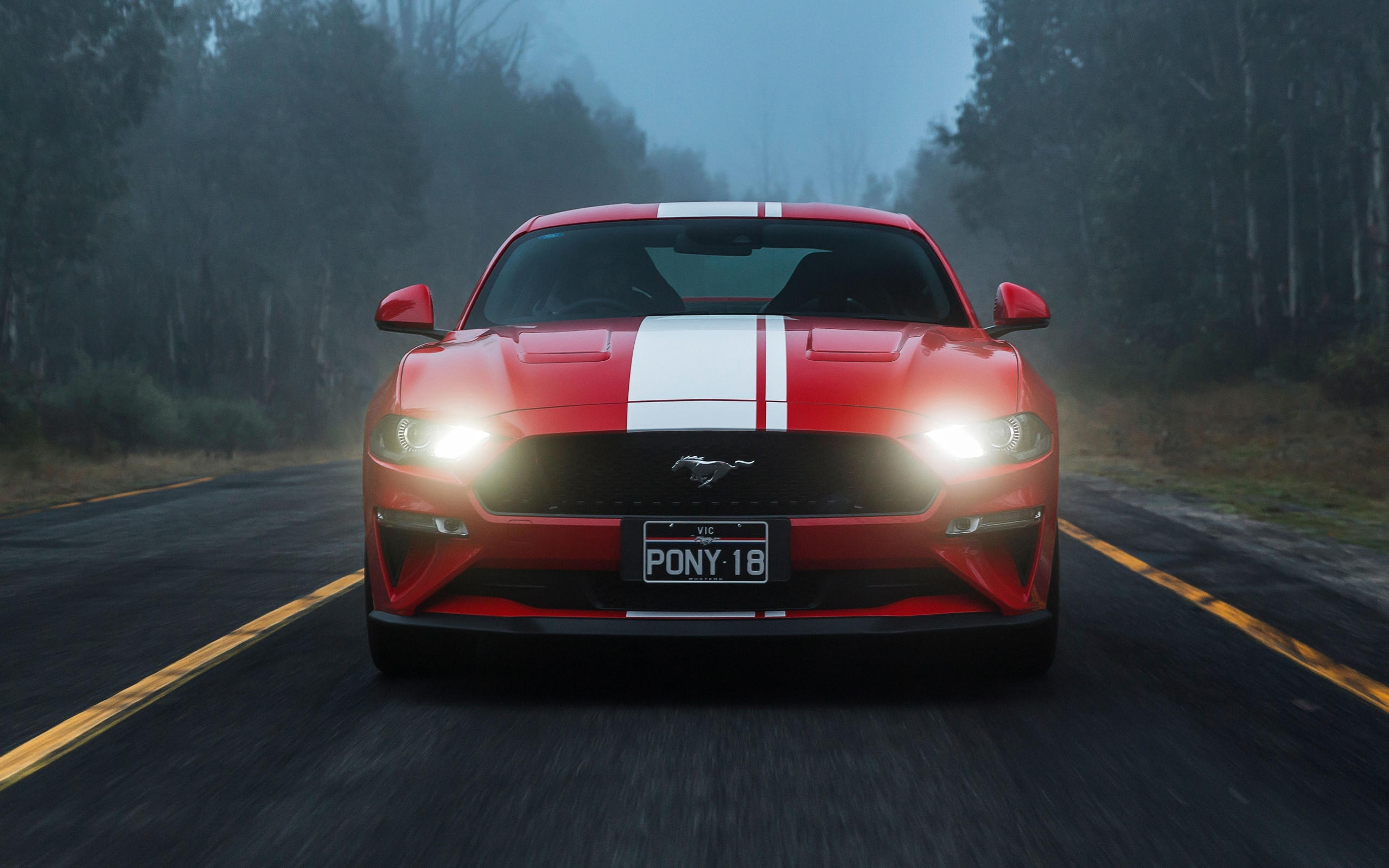 Wallpaper of Ford Mustang GT, MuscleCar, Red, Car, Vehicle background & HD image