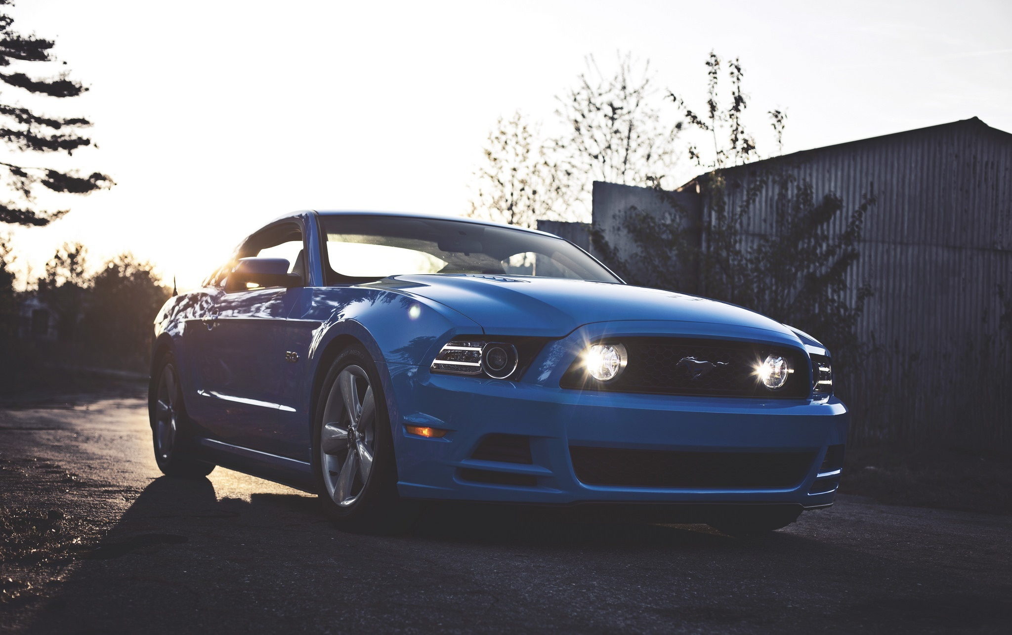 Wallpaper Ford Mustang Gt 5 0 Blue Color Road Desktop Picture Hd