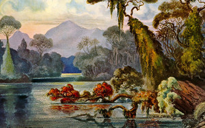 Preview wallpaper of Ernst Haeckel, Jungle, Lithography, Painting