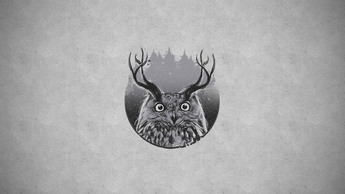HD Wallpaper of Animal, Forest, Horns, Owl