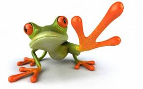 Preview wallpaper Graphics, Free Frog 3d, Frog, Paw
